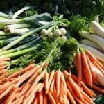 groenten-transport